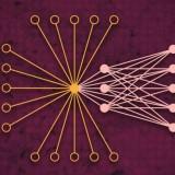 Sicurezza informatica migliore con l'analisi del traffico dati globale