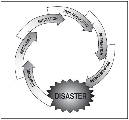 the disaster management cycle