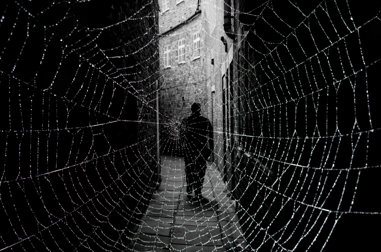 dark street and cobweb 1476345404bfr