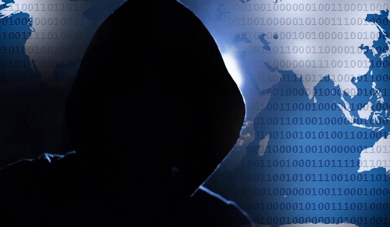 cyber criminale