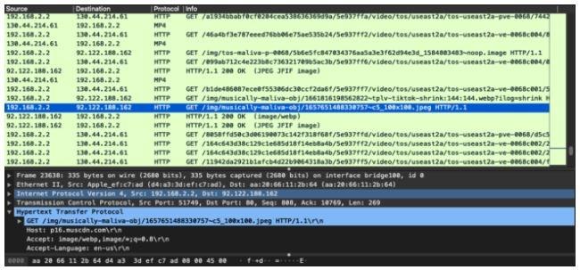 traffico di rete http utilizzato da tiktok
