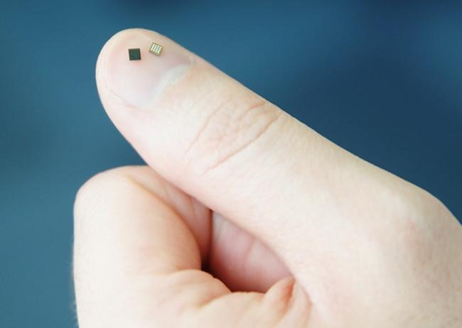 samsung secure element chip