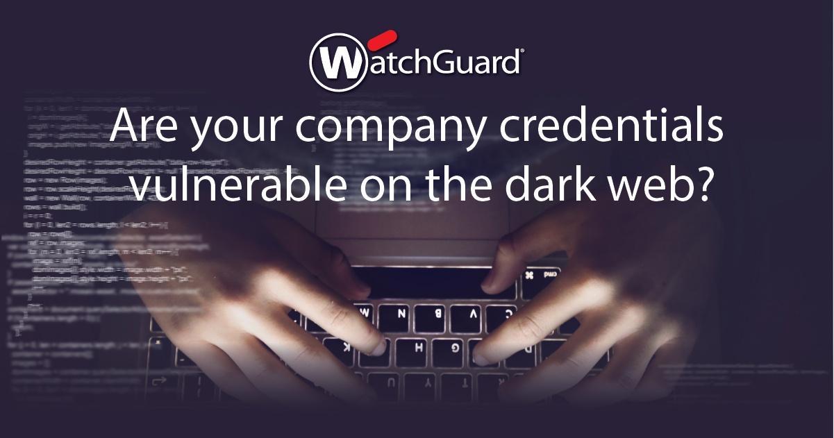 dark web scan2