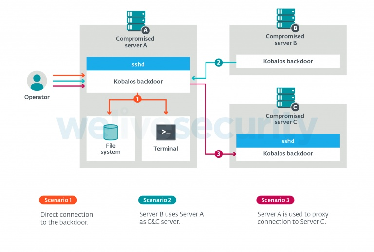 figure 2  overview of kobalos features and ways to access them 768x519