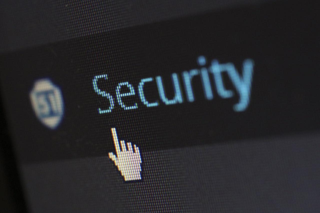 security protection anti virus software 60504 jpeg